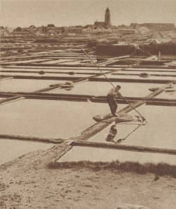 1200px-Paludier_au_travail_près_de_Batz-sur-Mer_(1939)